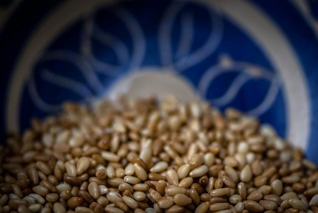 Sesame seeds Mark Seton, Flickr