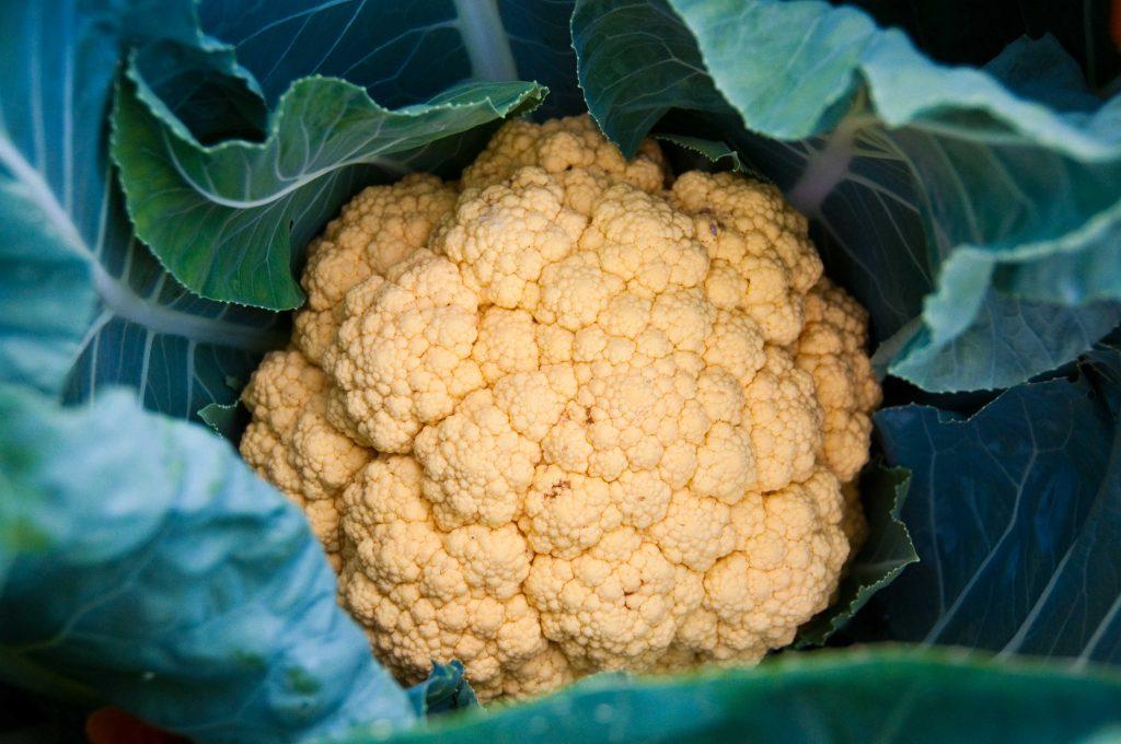 cauliflower by big dubya flickr