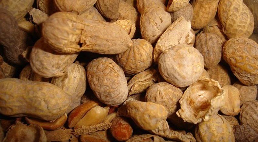 Six reasons why you should eatpeanuts