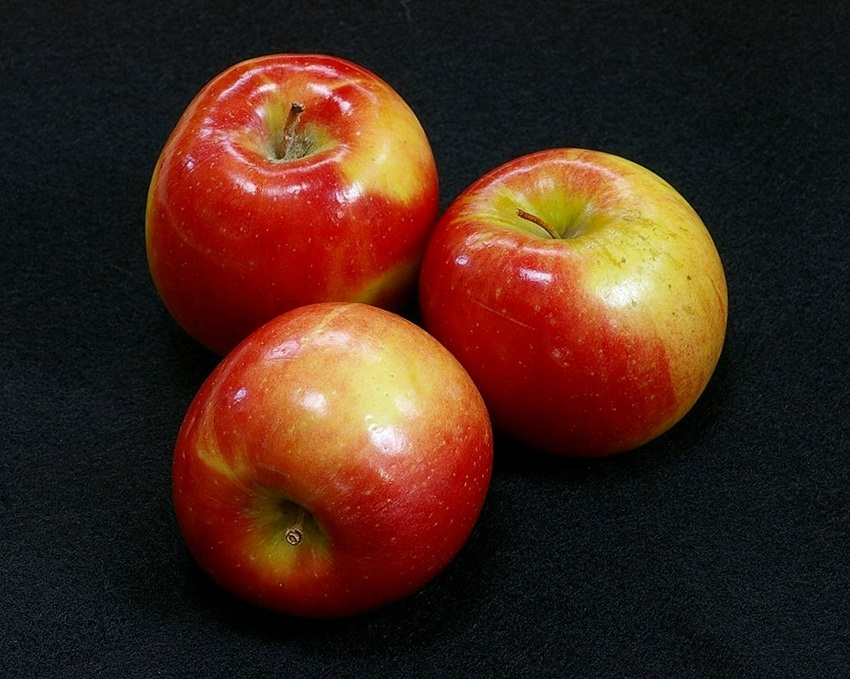 apple by Dave Shafer Flickr