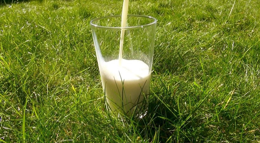 Why you should avoid dairy and other foods that causeinflammation