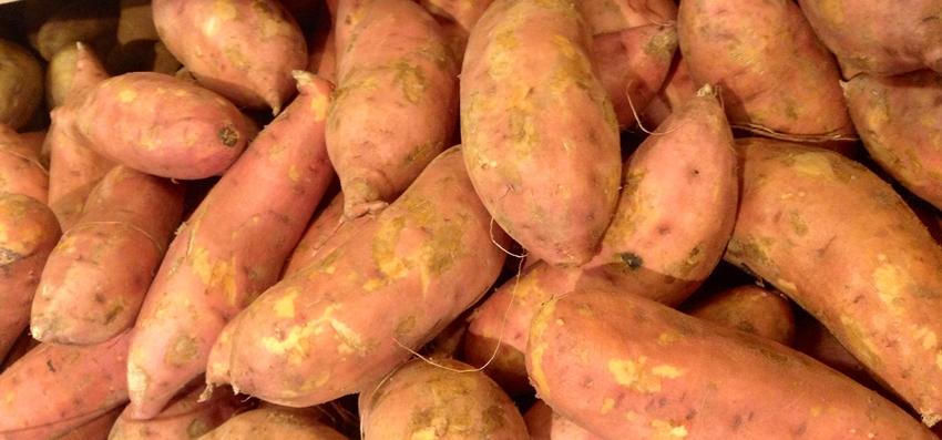sweet potato - mike mozart, flickr