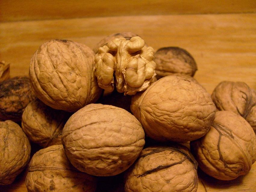 walnuts by inyucho - flickr
