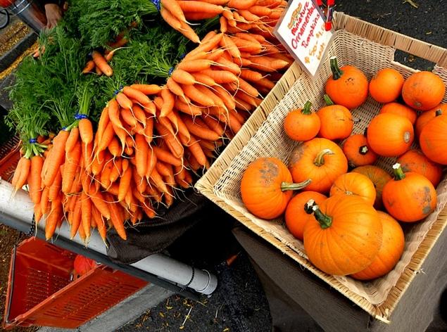 Pumpkin and carrot_Todd Mecklem