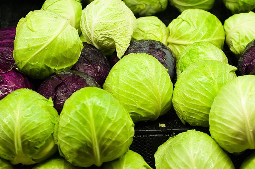 cabbage for arthritis - brian auer