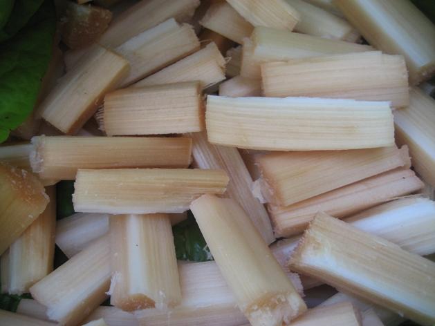 sugarcane - david weekly